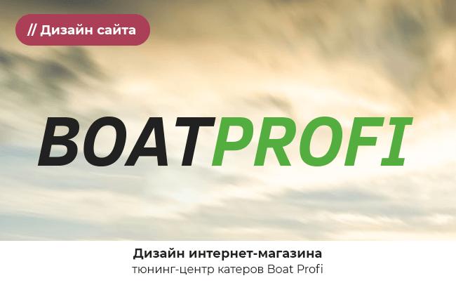 profi_preview-1